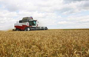 Russia Number One World Wheat Exporter
