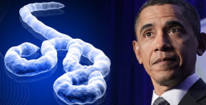 And Now, Ladies and Gentlemen: Obama's 'War on Ebola'...