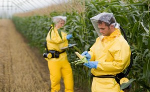 We're the 'Weeds' for Monsanto Roundup Weed Killer